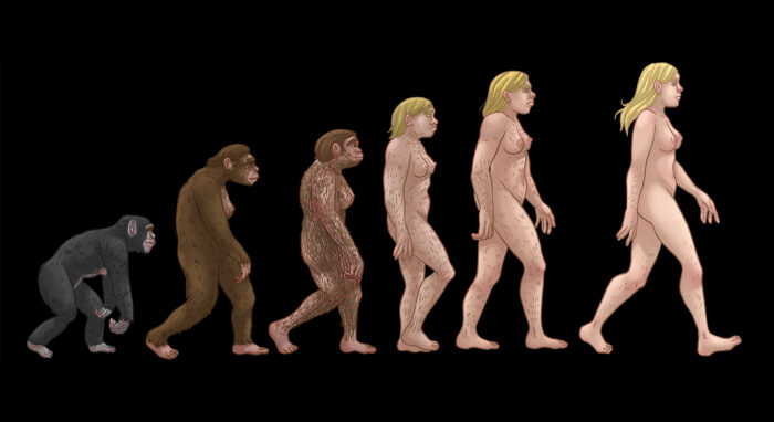 Civilization Timeline